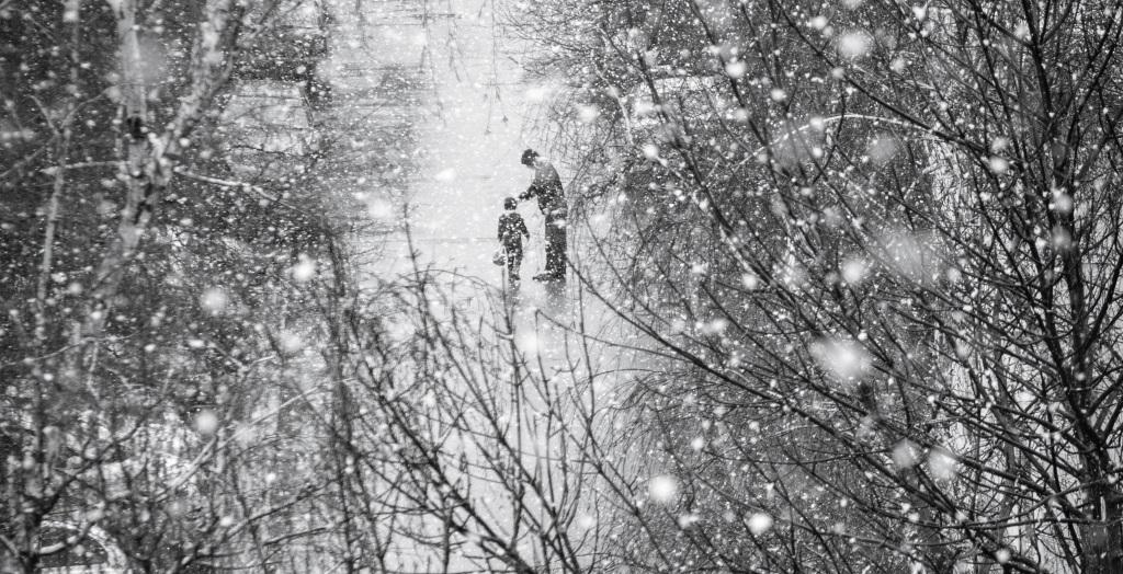 Photo by ervin cividini on Unsplash